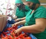 Industria alimentos